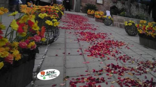 events-flowers-roses-delivery-flower-zone-fanar-lebanon 17
